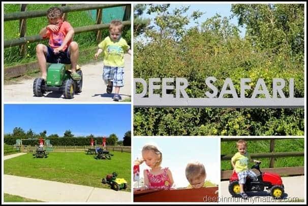 Snettisham Deer Park