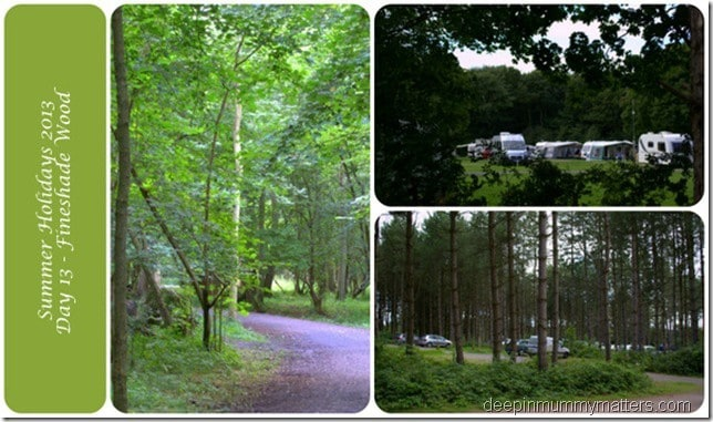 Summer Holidays 2013 – Day 13 – Fineshade Woods 1