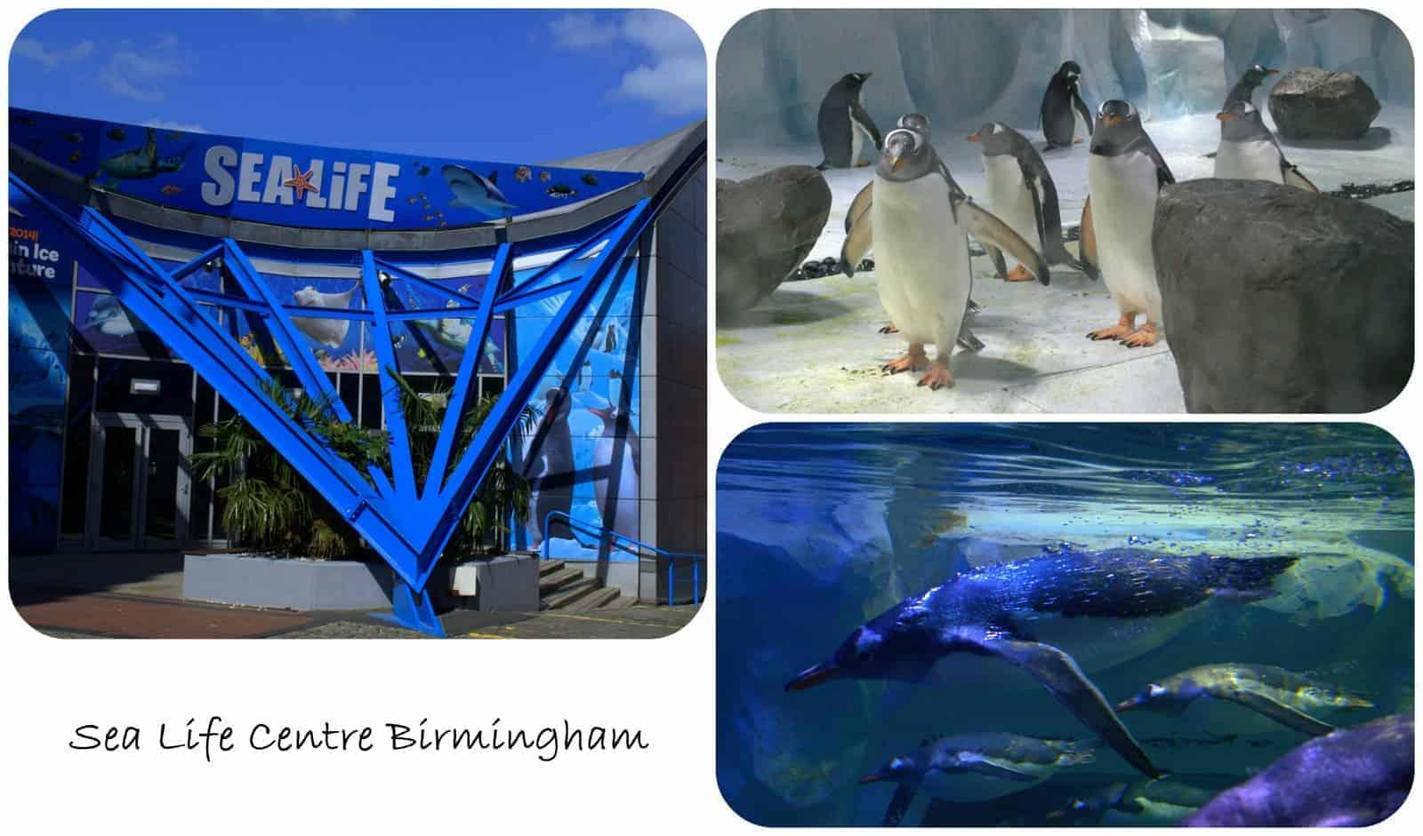 Easter Holidays – Day 8 – Sea Life Birmingham