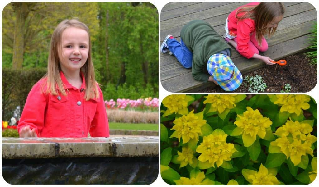 Easter holidays - Day 11 - Exploring Springfields 1