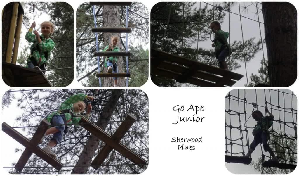 Go Ape Junior