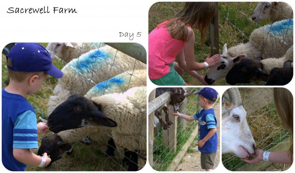 Sacrewell Farm
