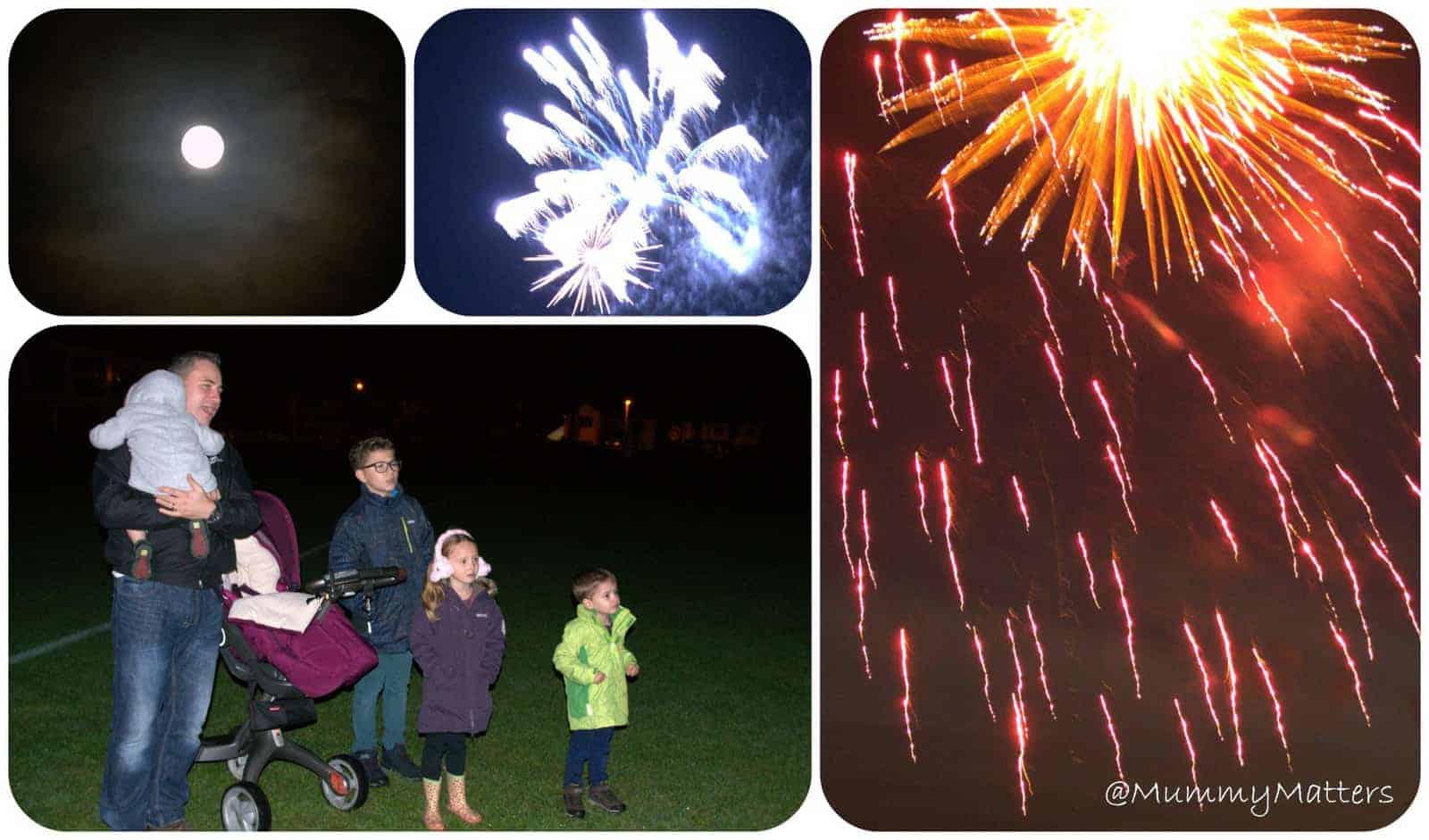 Fireworks Night 2014 – what did Jelly Bean think?