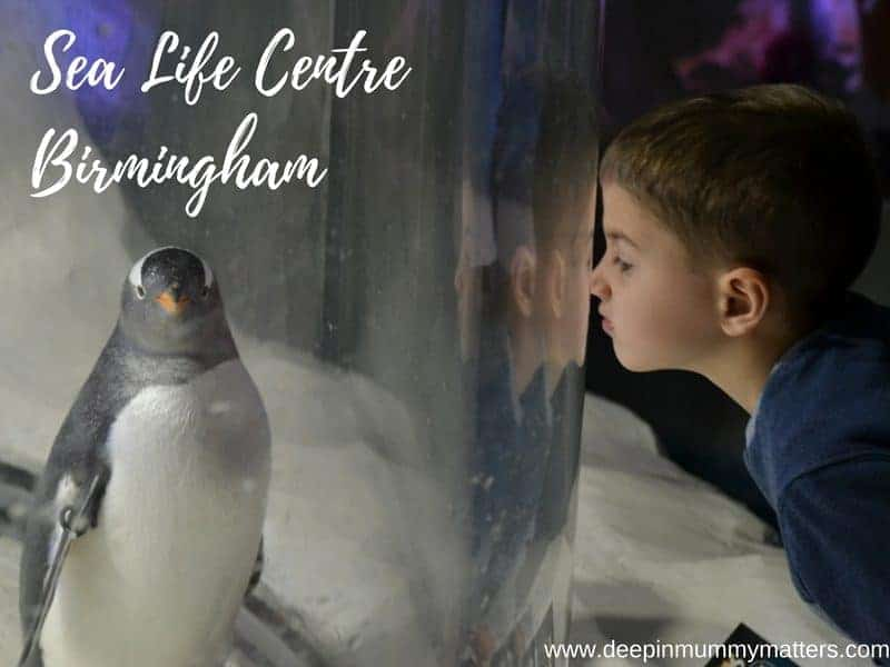 An afternoon at Sea Life Centre Birmingham 1