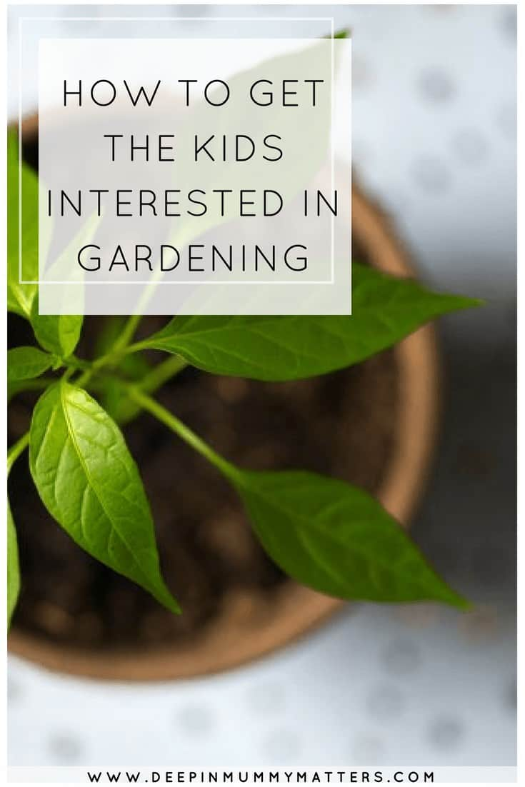 HOW TO GET THE KIDS INTERESTED IN GARDENING
