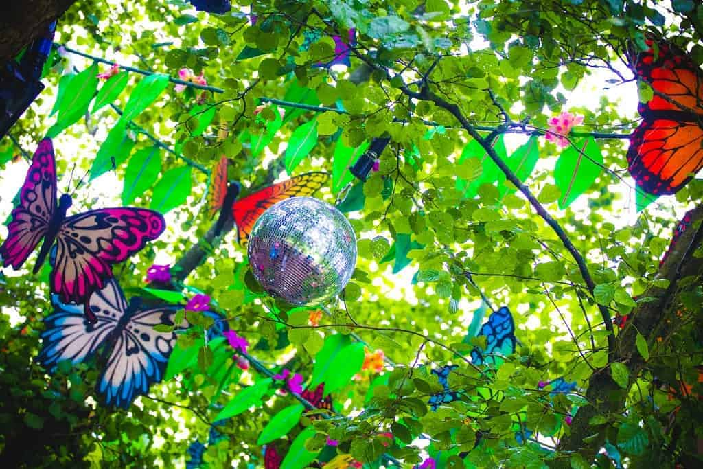 Glitter ball and butterflies hanging in a tree