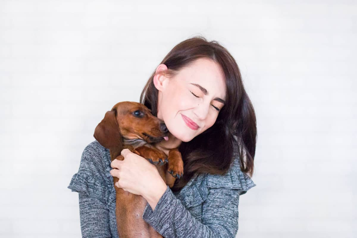 choosing a dog