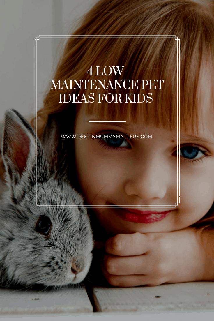 low-maintenance pet ideas for kids