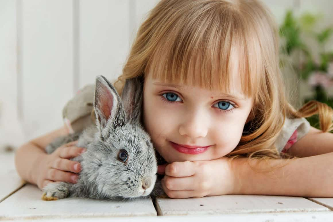 pet ideas for kids