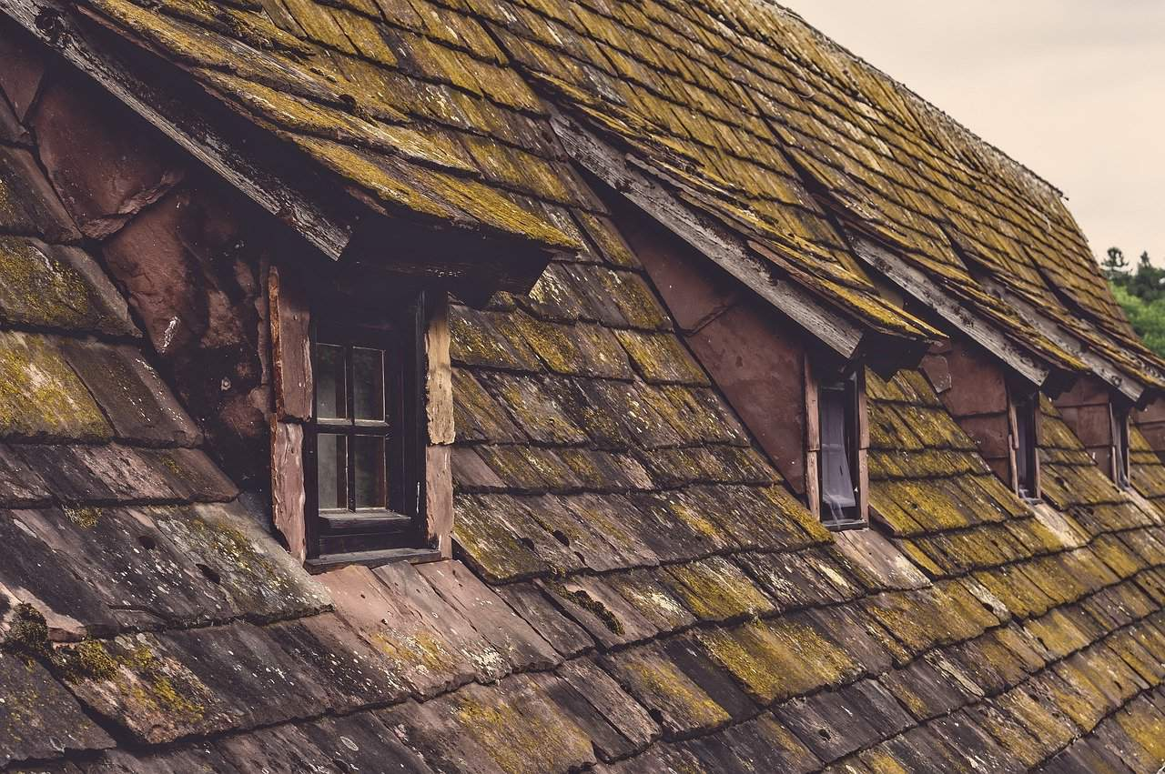 5 common roof problems and their solutions 2