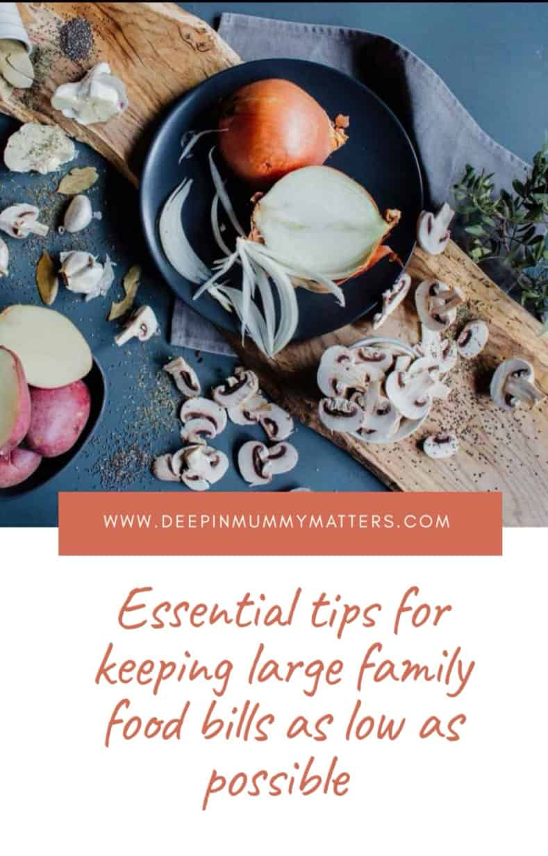 Essential Tips for Keeping Large Family Food Bills As Low As Possible 1