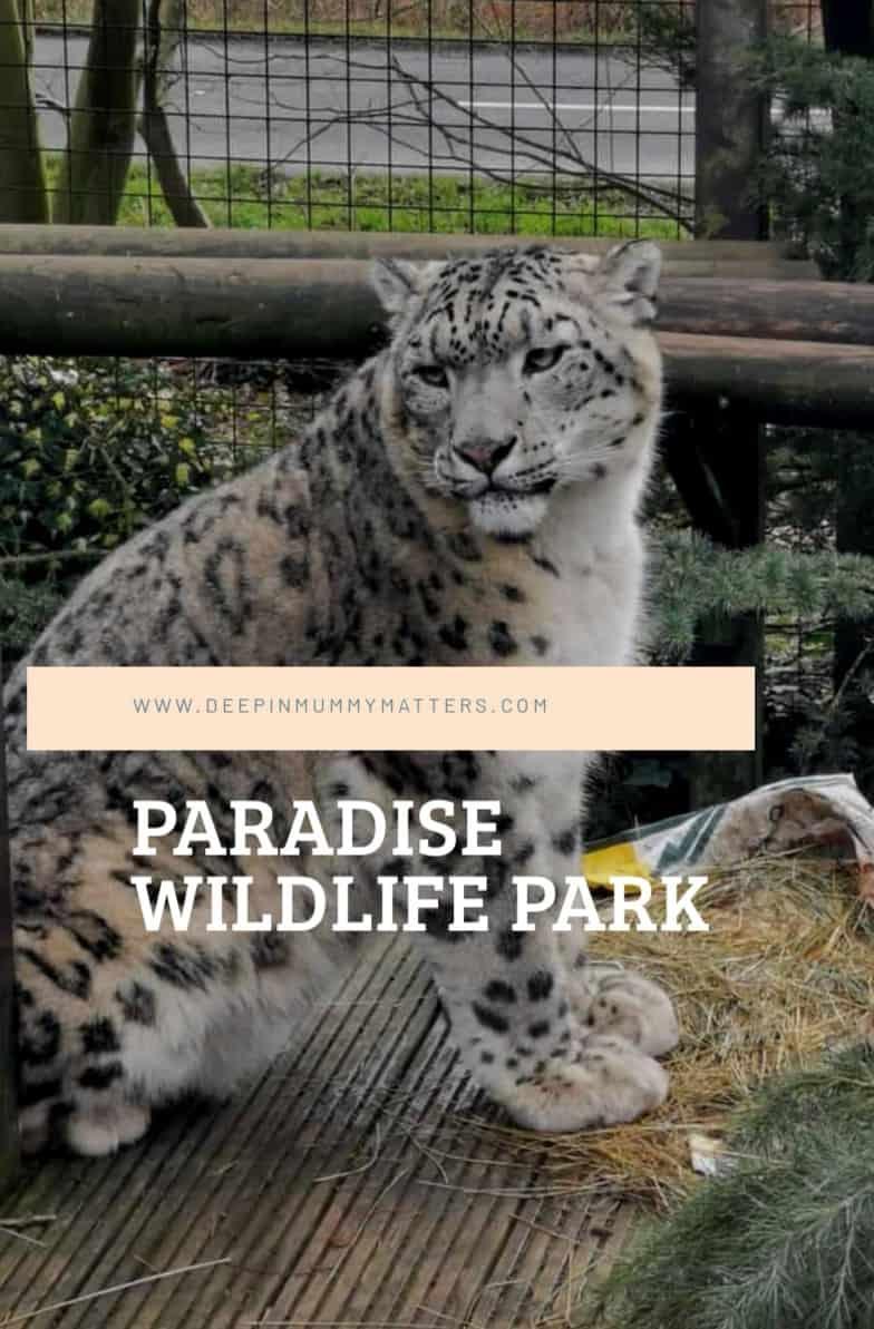 Paradise Wildlife Park Adventures 3