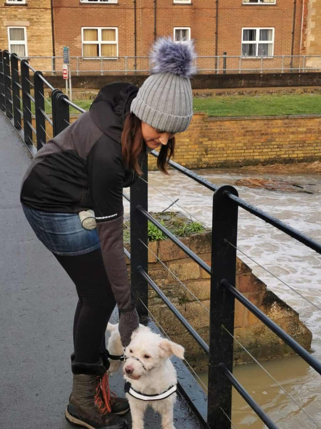 5 Winter Dog Walking Tips #ad 5