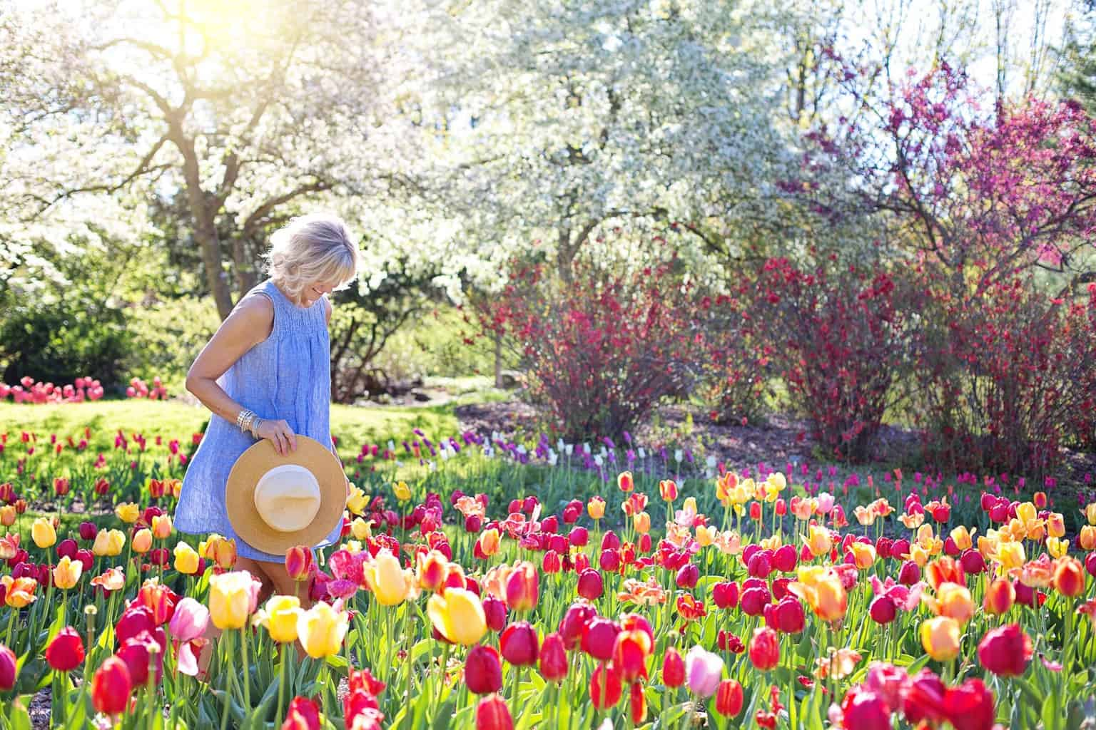 Making Your Garden Your Ultimate Relaxation Space