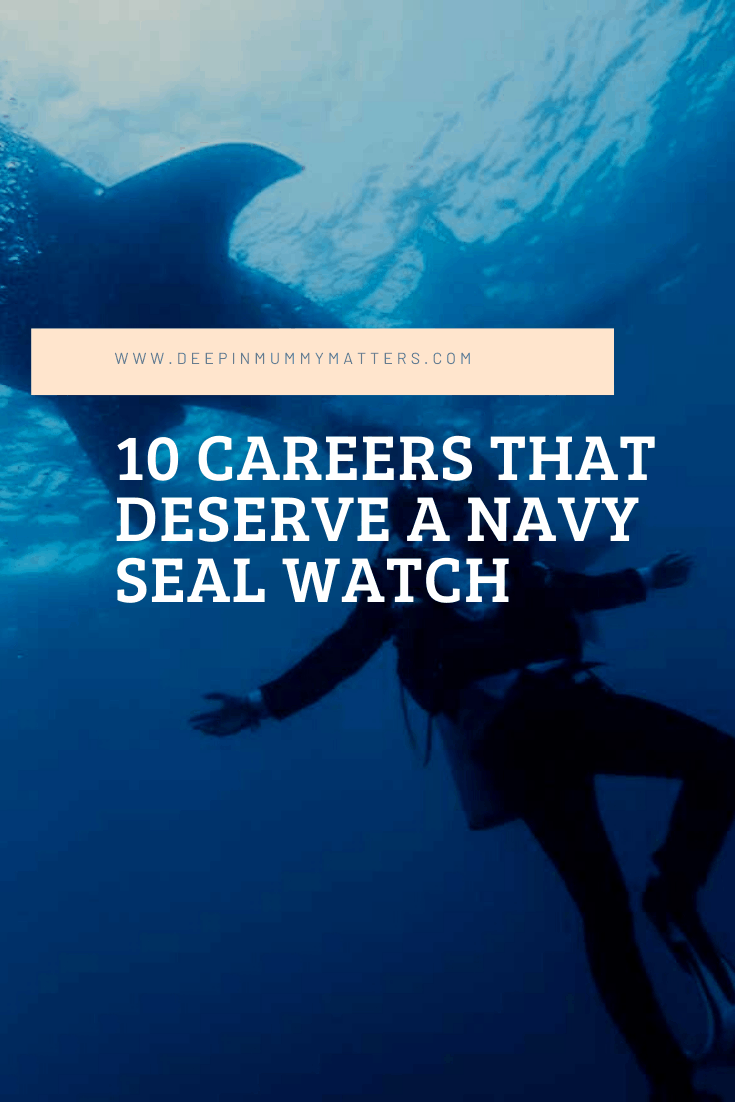 10 Careers That Deserve a Navy Seal Watch 1