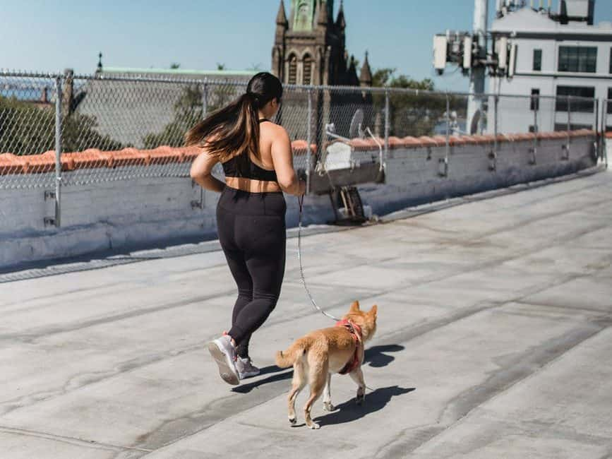 young woman running on bridge with dog
