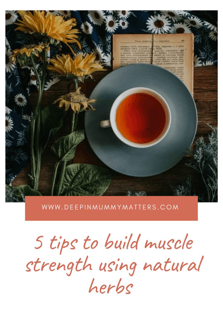 5 Tips To Build Muscle Strength Using Natural Herbs 5