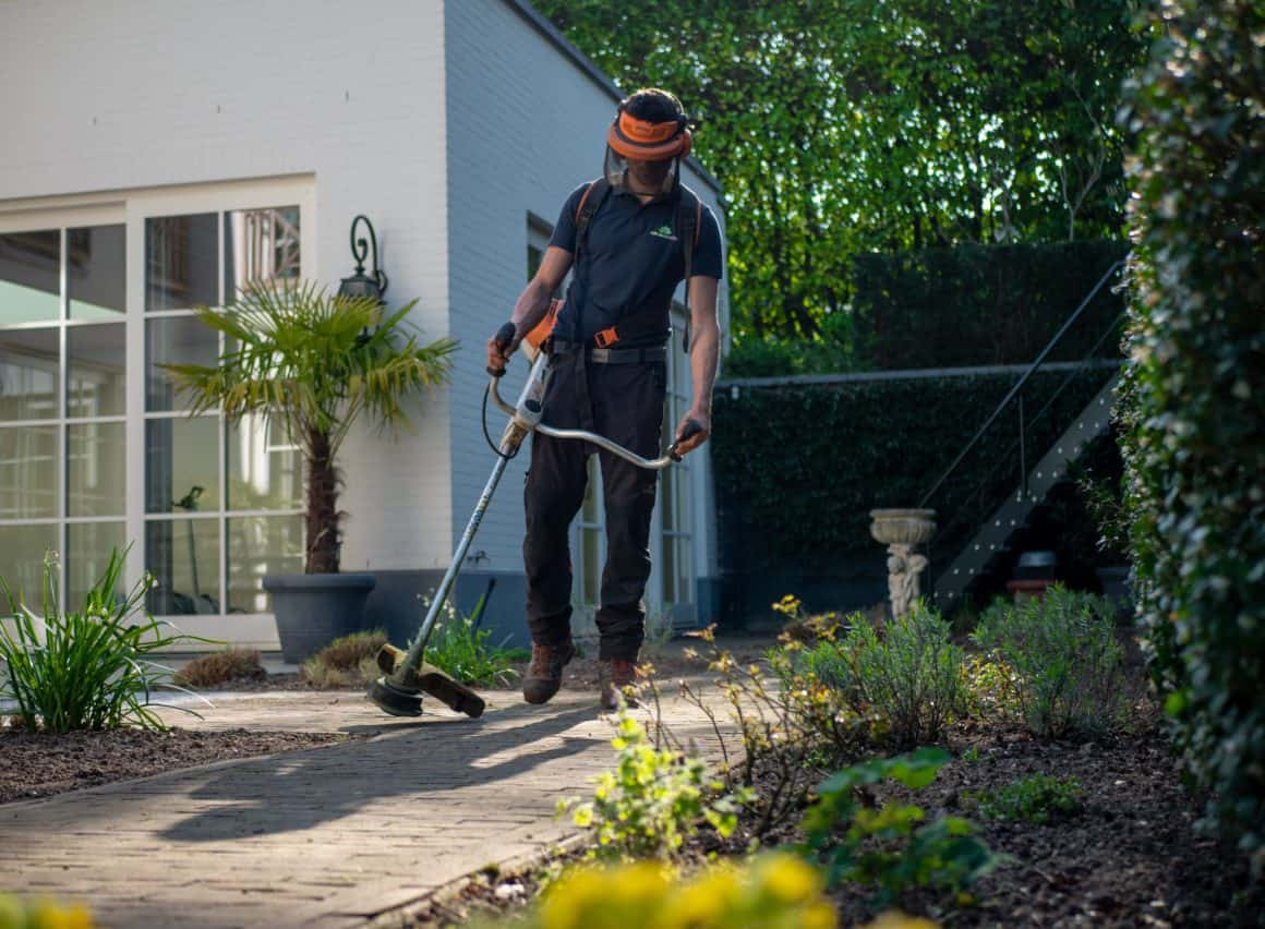 Preparing Your Family Garden for Spring and Summer 3