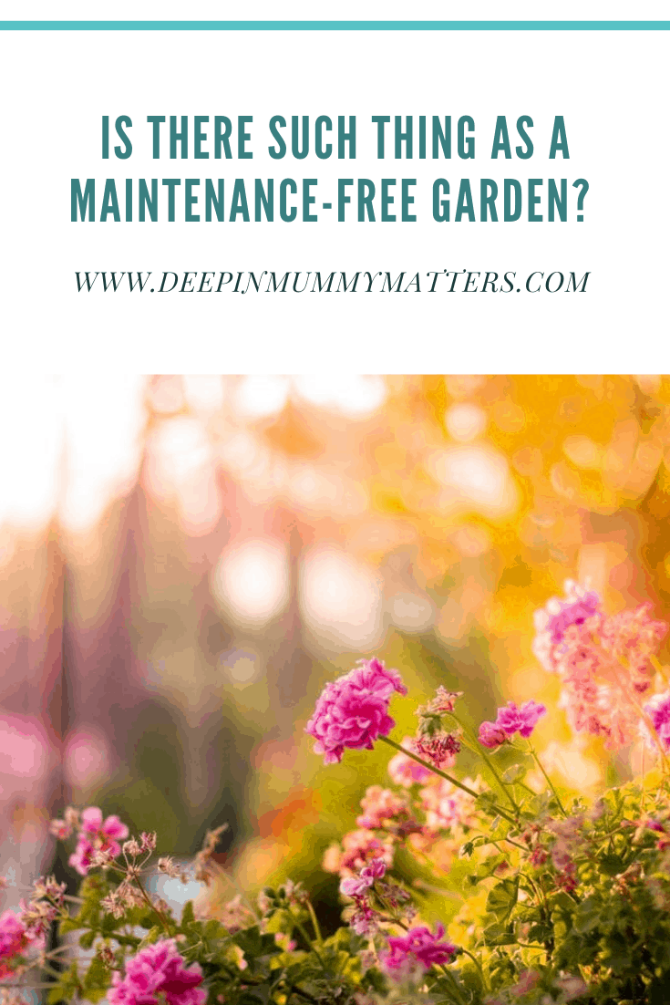 Is There Such A Thing As A Maintenance-Free Garden? 3