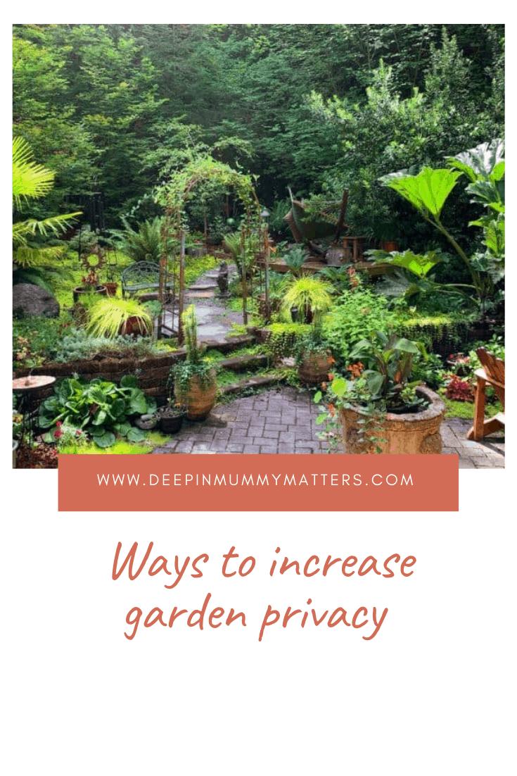 Ways to increase garden privacy 1