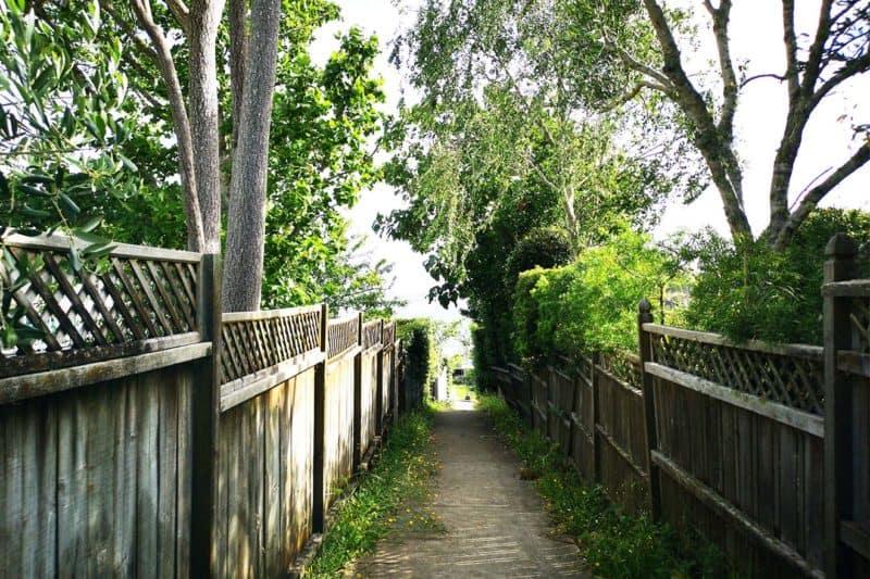 Ways to increase garden privacy