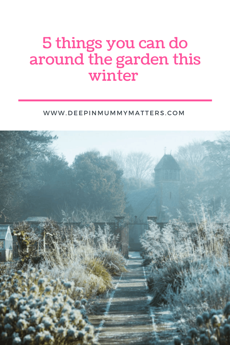 5 Things You Can Do Around the Garden This Winter 1
