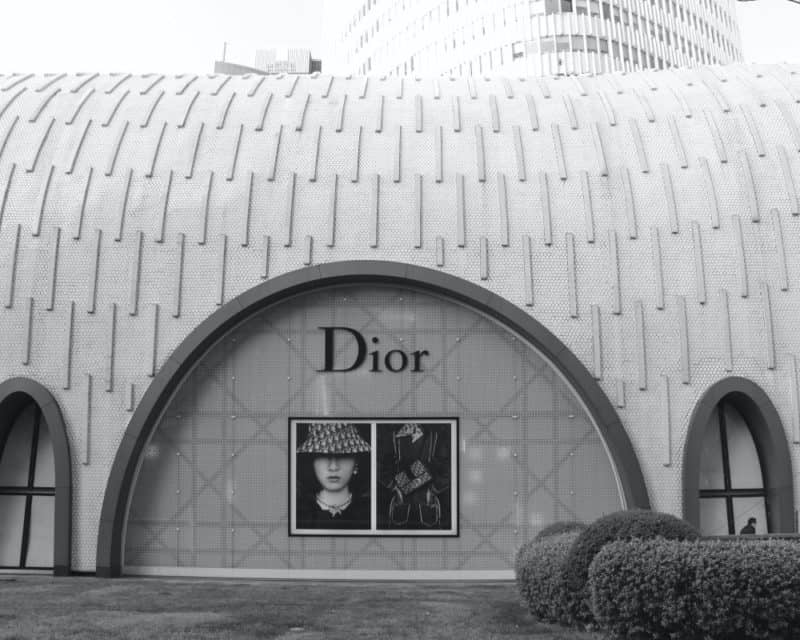The History Of Dior| How Dior Became So Famous