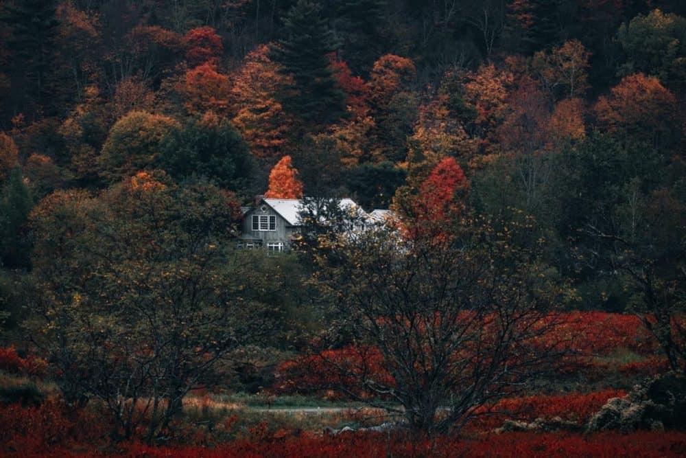 10 Family-Friendly Vacation Rentals to Enjoy the Fall Season