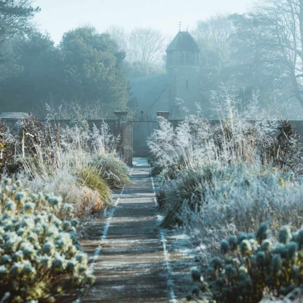 5 Things You Can Do Around the Garden This Winter